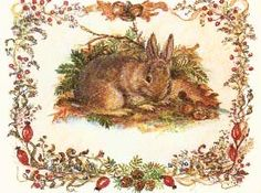 Tasha Tudor - Bunny Card