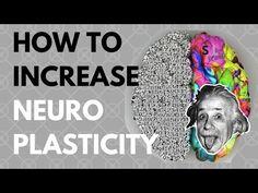 Neuroplasticity - YouTube