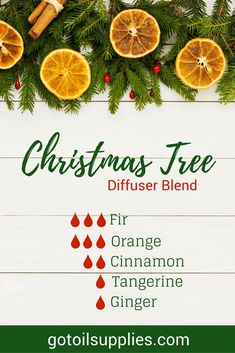 Christmas Tree Diffuser Blend - Winter Recipe With Fir, Orange, Cinnamon and Tangerine Essential Oils - gotoilsupplies Essential Oils For Inflammation, Essential Oils For Pain, Essential Oil Scents, Essential Oil Diffuser Blends, Tangerine Essential Oil, Ginger Essential Oil, Cinnamon Essential Oil, Essential Oils Christmas, Orange