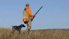 Checklist for The First Hunt with your Dog