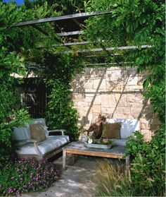 Secret garden hideaway. Creeping vines & trellis.