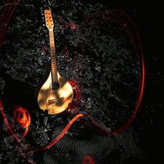 Help vote my picture as Instacanvas photo of the week. this mandola will be at our first Musikmesse Frankfurt 2013. Hall 3.1 Stand A90 along with our irish Tonewood guitars. Come and play...