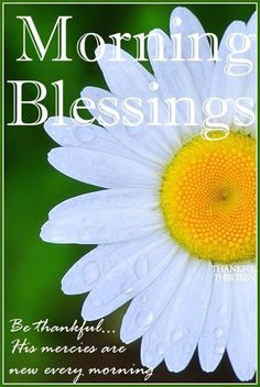 Morning Blessings Be Thanful