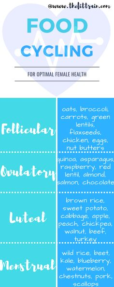 Food cycling infographic for the 4 stages of your cycle: follicular, ovulatory, luteal, and menstrual foodcycling alisavitti womancode hormones 667799450974337876