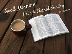 Have a blessed Sunday. Positive Good Morning Quotes, Happy Morning Quotes, Good Morning Wishes, Sunday Morning, Have A Blessed Sunday, Have A Happy Day, Weekend Quotes, Sunday Quotes, Happy Week
