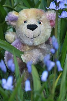 Chugglepop is a small, chirpy and cuddly, one of a kind, mohair artist teddy bear made from hand dyed mohair by Barbara-Ann Bears