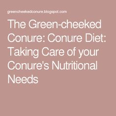 The Green-cheeked Conure: Conure Diet: Taking Care of your Conure's Nutritional Needs