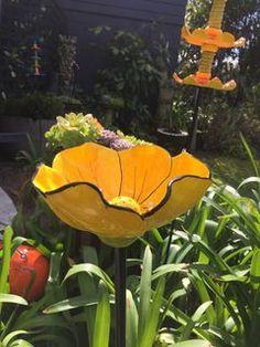 Yellow Birdbath Flower
