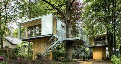 Neste hotel em Berlim, os hóspedes ficam sob a copa das árvores Foto: Divulgação / Baumraum