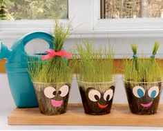 Nature- Craft Idea  Materials  One 9- or 12-ounce plastic cup  1 to 1 1/4 cups of potting soil  1 tablespoon of grass seeds (we bought rye grass at a garden center)  Decorations, such as office dot stickers, markers, and ribbon (for safety, it should measure less than 6 inches long)