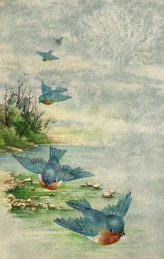 Little Birdie Blessings : Blue Birds From Heaven ~ But as it is written, Eye hath not seen, nor ear heard, neither have entered into the heart of man, the things which God hath prepared for them that love him. Images Vintage, Vintage Postcards, Vintage Cards, Vintage Ephemera, Vintage Clip, Scripture Verses, Bible Scriptures, Encouragement Scripture, Scripture Images