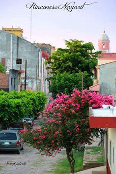 Acaponeta Nayarit Iglesias De Mexico Ex Conventos Tambien