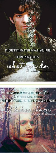 I love these quotes, reminds me of my life. I fight for the good and I try to do what God has planned for my life.
