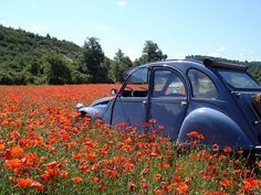 4 jours avec 2CV Nostalgisch rondreizen, 4 dagen. Nostalgisch rondreizen in romantisch Zuid Frankrijk: hoe kan dat beter dan in een 2CV, ofwel Lelijke Eend? In (gedwongen) rustig tempo is het heerlijk onthaasten en je hebt alle tijd om al het moois van de omgeving in je op te nemen. Lees meer: http://bedandtodo.nl/activiteit/7/4-jours-avec-2cv-nostalgisch-rondreizen