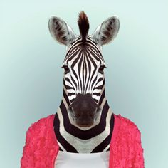 Yago Partal takes photos of Animals Dressed Like Humans. The Zoo Portraits are made by blending an animal portrait with the suitable illustration of clothing. African Bush Elephant, African Giraffe, Tier Wallpaper, Animal Wallpaper, Seagrass Wallpaper, Paintable Wallpaper, Emoji Wallpaper, Colorful Wallpaper, Fabric Wallpaper