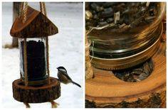 Cómo hacer un comedero para aves con un tronco y un frasco de vidrio - Notas - La Bioguía