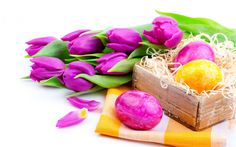 """Buy the royalty-free Stock image """"Spring bouquet tulips with Easter eggs"""" online ✓ All image rights included ✓ High resolution picture for print, web & ."""