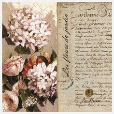 Editions de Visuels fleurs oranges jardin
