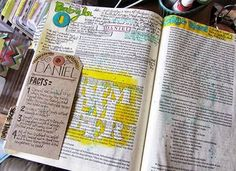 Image result for daniel bible journaling