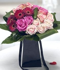My Darling - A luxurious Valentine's bouquet featuring pink Roses, complemented perfectly by deep red velvety Germini. Striking Aspidistra and Aralia leaves complete this exquisite arrangement.
