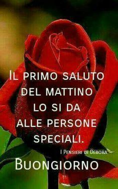 Italian Memes, Italian Phrases, New Years Eve Party, Good Morning, Gifs, Pandora, Stickers, Facebook, Flowers