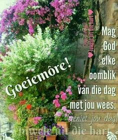 Good Morning Wishes, Day Wishes, Good Morning Quotes, Goeie Nag, Goeie More, Afrikaans Quotes, Herbs, Plants, Messages