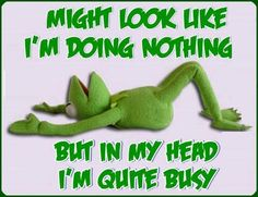 Kermit is busy. Kermit, Funny Frogs, Cute Frogs, Sad Love Quotes, Funny Quotes, Qoutes, Humorous Sayings, Nice Sayings, Badass Quotes