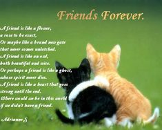valentine's day poems for friends | Poems about friendship, friendship day and best friends on pictures ...