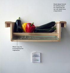 Mais uma: sabia que as beringelas, pimentos e pepinos devem ser guardados com água por baixo (sem entrar em contacto) para se manterem frescos e viçosos ?