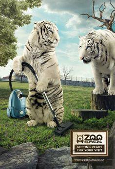 Zoo Bratislava by Ivan Holic, via Behance