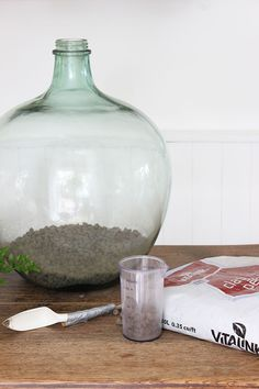 How to plant up a closed carboy bottle terrarium Ecosystem In A Bottle, Bottle Terrarium, Bottle Garden, Garden Terrarium, Glass Garden, Bottle Plant, Closed Terrarium Plants, Plant In Glass, Plants In Bottles