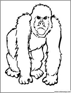 dibujos pintar mono (5)
