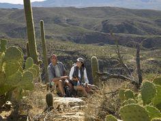 Hiking in the Arizonian desert,