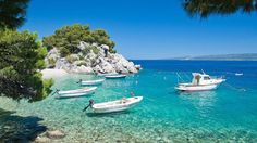 Summer Sea Paradise Beautifull Green