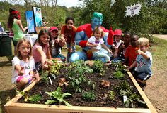 Captain Planet Foundation   Supporting Environmental Education. Grants available for participating teachers.