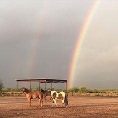 Double Rainbow | Tucson | Arizona | Photo via Instagram by @shellyjtaylor