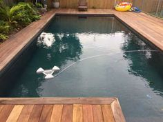 Dragonfly floating pool skimmer in a gorgeous natural pool Floating Pool Skimmer, Deck With Pergola, Pool Cleaning, Pool Ideas, Swimming Pools, Spa, Surface, Backyard, Natural