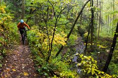 Mountain bike guiding service in Pisgah National Forest and DuPont State Forest…