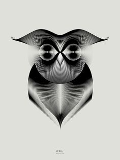 Owl by Andrea Minini
