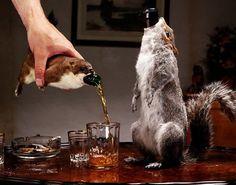 Eeewwww!  WTH?!?  Turn your road-kill into bottle holders!?!