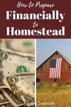 While you're dreaming about chickens and gardens, you've got to plan financially in order to make your homestead dream come true!