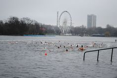 hyde park swimming - Google Search