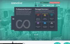 http://www.coevolve.com/