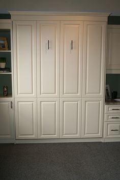 Queen size panel bed/Murphy bed in the upright position.