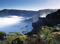 The Blue Mountains offer fresh mountain air, beauty and peace. #BlueMountains #Australia #travel #vacation #hiking