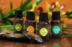 Living Beatitudes Aromatherapy Essential Oils 100 Organic Pure Therapeutic Grade Set of 4x10ml Eucalyptus Lemongrass Orange Pine * More info could be found at the image url.