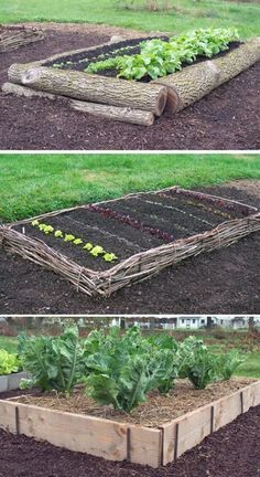 Raised garden beds add a lot of beauty to a garden. They're also excellent for d… – Raised Garden Beds Small Backyard Gardens, Small Gardens, Backyard Landscaping, Landscaping Ideas, Backyard Ideas, Backyard Garden Landscape, Large Backyard, Backyard Patio, Patio Ideas