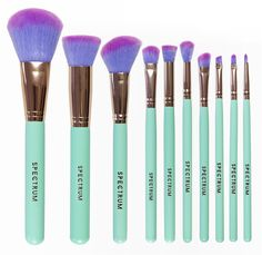 Glam Clam | Spectrum brushes  I love the colors on these bad boys.