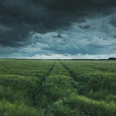 I love dramatic skies ☁ #fiftyfifty by livingitrural http://ift.tt/1Jg2JMB from Instagram!!