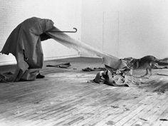 Joseph Beuys i love america and america loves me à New York en 1974 il passa trois jours dans une pièce avec u coyote. Le titre est contradictoire et ironique.